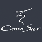 cono_sur_featured